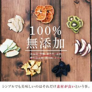 ドライフルーツ 砂糖不使用 無添加 7種セット 送料無料 りんご 梨 いちご キウイ パイン メロン 柑橘 オレンジ 国内加工 国産品あり|so-suke|11