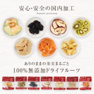 ドライフルーツ 砂糖不使用 無添加 7種セット 送料無料 りんご 梨 いちご キウイ パイン メロン 柑橘 オレンジ 国内加工 国産品あり|so-suke|04