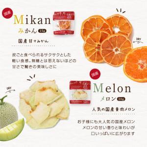 ドライフルーツ 砂糖不使用 無添加 7種セット 送料無料 りんご 梨 いちご キウイ パイン メロン 柑橘 オレンジ 国内加工 国産品あり|so-suke|06