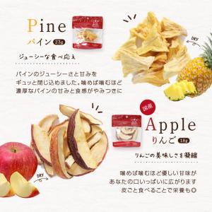 ドライフルーツ 砂糖不使用 無添加 7種セット 送料無料 りんご 梨 いちご キウイ パイン メロン 柑橘 オレンジ 国内加工 国産品あり|so-suke|07