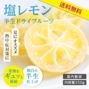 ドライフルーツ 塩レモン 250g 送料無料 輪切り 熱中症 対策 予防 ドライ 塩 レモン おやつ 南信州菓子工房 お菓子作りにも so-suke