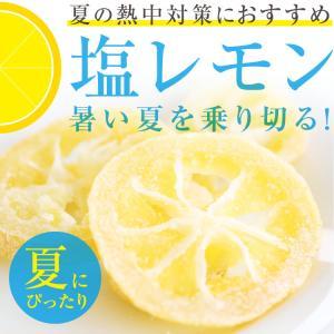 ドライフルーツ 塩レモン 250g 送料無料 輪切り 熱中症 対策 予防 ドライ 塩 レモン おやつ 南信州菓子工房 お菓子作りにも so-suke 02