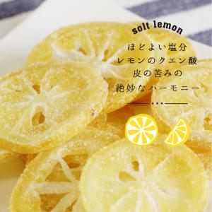 ドライフルーツ 塩レモン 250g 送料無料 輪切り 熱中症 対策 予防 ドライ 塩 レモン おやつ 南信州菓子工房 お菓子作りにも so-suke 11