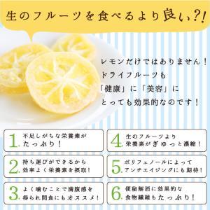 ドライフルーツ 塩レモン 250g 送料無料 輪切り 熱中症 対策 予防 ドライ 塩 レモン おやつ 南信州菓子工房 お菓子作りにも so-suke 13
