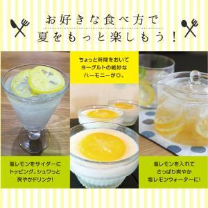 ドライフルーツ 塩レモン 250g 送料無料 輪切り 熱中症 対策 予防 ドライ 塩 レモン おやつ 南信州菓子工房 お菓子作りにも so-suke 14