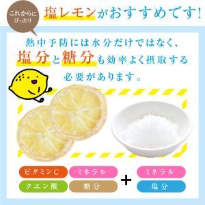 ドライフルーツ 塩レモン 250g 送料無料 輪切り 熱中症 対策 予防 ドライ 塩 レモン おやつ 南信州菓子工房 お菓子作りにも so-suke 04