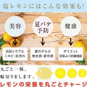ドライフルーツ 塩レモン 250g 送料無料 輪切り 熱中症 対策 予防 ドライ 塩 レモン おやつ 南信州菓子工房 お菓子作りにも so-suke 05