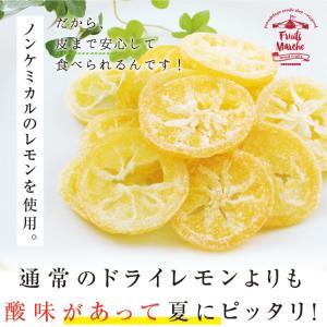 ドライフルーツ 塩レモン 250g 送料無料 輪切り 熱中症 対策 予防 ドライ 塩 レモン おやつ 南信州菓子工房 お菓子作りにも so-suke 08