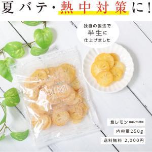 ドライフルーツ 塩レモン 250g 送料無料 輪切り 熱中症 対策 予防 ドライ 塩 レモン おやつ 南信州菓子工房 お菓子作りにも so-suke 09