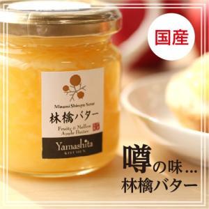 国産 林檎バター 長野 信州産 りんごをたっぷり使った話題のジャム りんごバター ジャム パン 朝食に|so-suke