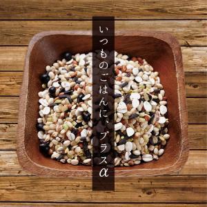 雑穀米 私の三十三雑穀 送料無料 スーパーフード配合 1000円ポッキリ 雑穀 もち麦 キヌア チアシード|so-suke|05