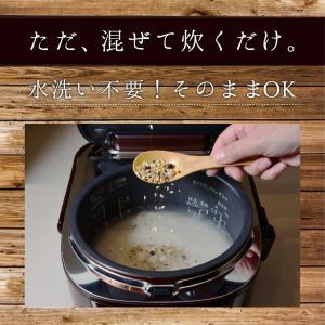 雑穀米 私の三十三雑穀 送料無料 スーパーフード配合 1000円ポッキリ 雑穀 もち麦 キヌア チアシード|so-suke|06