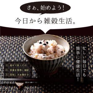 雑穀米 私の三十三雑穀 送料無料 スーパーフード配合 1000円ポッキリ 雑穀 もち麦 キヌア チアシード|so-suke|09