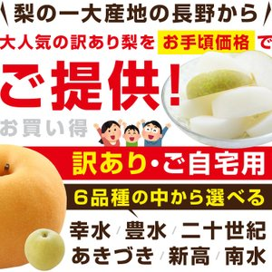 訳あり 梨 5kg 送料無料 長野県産 幸水 豊水 ご家庭用 お徳用 なし ナシ|so-suke|02