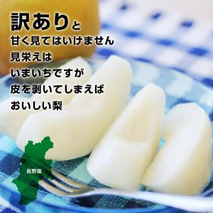 訳あり 梨 5kg 送料無料 長野県産 幸水 豊水 ご家庭用 お徳用 なし ナシ|so-suke|11