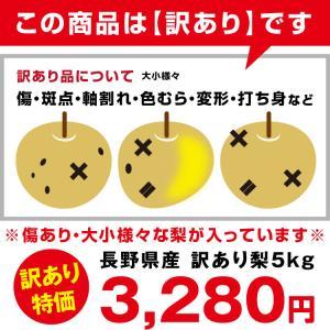 訳あり 梨 5kg 送料無料 長野県産 幸水 豊水 ご家庭用 お徳用 なし ナシ|so-suke|12