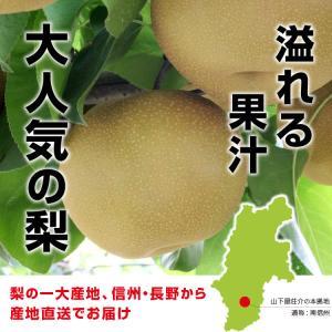 訳あり 梨 5kg 送料無料 長野県産 幸水 豊水 ご家庭用 お徳用 なし ナシ|so-suke|05