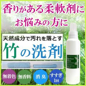 バンブークリア 洗剤 エシカルバンブー 竹の洗剤  Bamboo Clear 無添加洗剤 洗濯洗剤 天然成分100%  620ml 柔軟剤 無香料 soaptenten