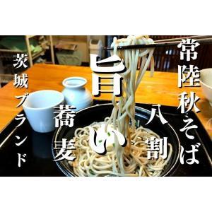 常陸秋そば二八 プレミアムもり汁付き 2人前 日本そば|soba-zen