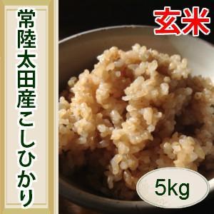 令和1年産 茨城県常陸太田産こしひかり玄米 5kg