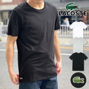 ラコステからコットン100%Tシャツが登場!!ストレッチ性に富み、肌触りがいいアイテムです。右裾の部...
