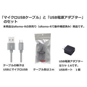 シルバー USB電源アダプター USB電源ケーブル セット sRemo-R エスリモアール 利用可|socinno