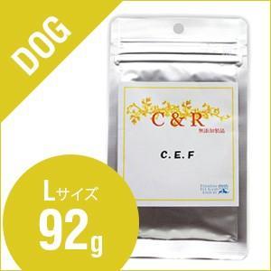 C&R C.E.F Lサイズ(92g) (犬用)S.G.J.「旧ソリッドゴールド」|sofia