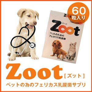 Zootズット 1箱60粒入り|sofia