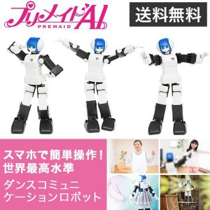 MANOI企画 DMM.make ROBOTS プリメイドAI|softbank-selection