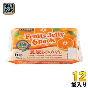 和歌山産業 蔵王高原農園 フルーツゼリー6パック 愛媛県産みかん 12袋 (6袋入×2 まとめ買い)