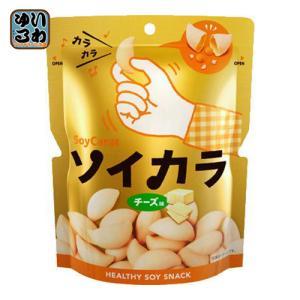 大塚製薬 ソイカラ チーズ味 27g 18袋入