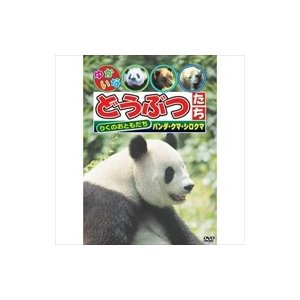 ゆかいなどうぶつたち〜パンダ・クマ・シロクマ〜 (DVD) ABX-113|softya2