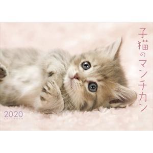 最終処分価格SALE! 卓上 秋田犬 2019年カレンダー 19CL-0392 softya2