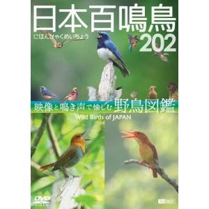 シンフォレストDVD 日本百鳴鳥 202 映像と鳴き声で愉しむ野鳥図鑑 / (DVD) SDB13-TKO