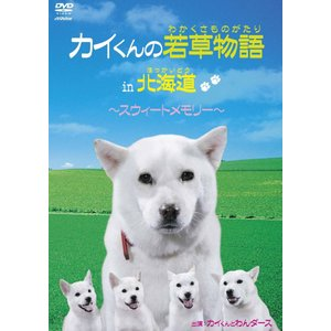 カイくんの若草物語 in 北海道 〜スウィートメモリー〜 (DVD) VIBG-5013