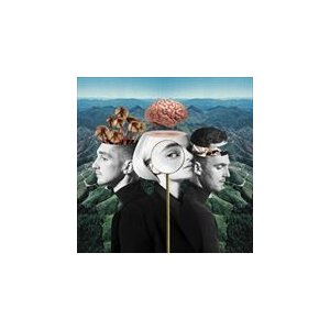 WHAT IS LOVE? / CLEAN BANDIT クリーン・バンディット(輸入盤) (CD) 0190295552589-JPT|softya