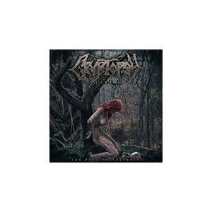 BOOK OF SUFFERING : TOME 1 / CRYPTOPSY クリプトプシー(輸入盤) (CD) 8715392163029-JPT