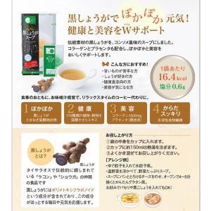 ぽかぽか黒しょうがスープ 20g(5g×4袋)【SM】総合メディカル|sogo-e-shop|02