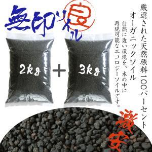 送料無料 ソイル 熱帯魚 2kg+3kg(5kg)  熱帯魚 底砂ブラック アクアリウム 激安 天然原料 オーガニック アクア用品 水質調整底床の画像