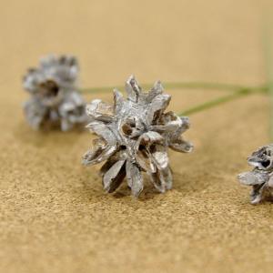 木の実ピック フラワーコーン ウォッシュホワイト 3本入 プリザーブドフラワー 花材 そらプリ|solargift