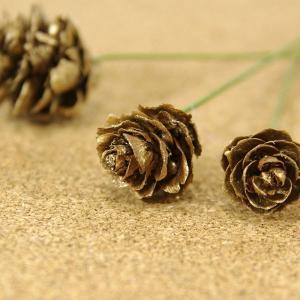 木の実ピック ミニツガ シックゴールド 3本入 プリザーブドフラワー 花材 そらプリ|solargift