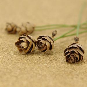 木の実ピック タマラックコーン ナチュラル 5本入 プリザーブドフラワー 花材 そらプリ|solargift