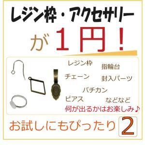 特価 1円 レジン枠 パーツ アクセサリー チェーン|solargift