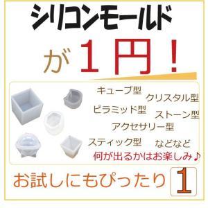 特価 1円 シリコンモールド シリコン 型 1個|solargift