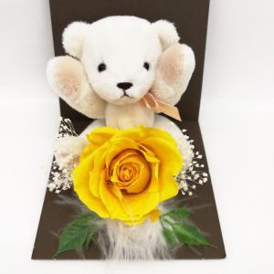 母の日 ギフト プレゼント お花 クリアケース アリスサフラン 個別 くま バラ solargift