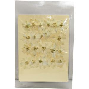 クリアリウム 花材 押し花 千鳥草 ホワイト 24輪 固まるハーバリウム|solargift