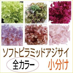 プリザーブドフラワー 材料 花材 ソフトピラミッドアジサイ ヘッド 全色 オール 小分け|solargift