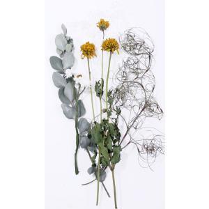 プリザーブドフラワー 花材 キット セットA ハーバリウム|solargift