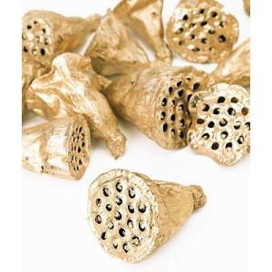 ドライ 木の実 ミニハス 約4cm ゴールド 小分け 3個 ハスの実|solargift