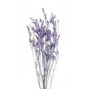 ドライフラワー 花材 HDスターチス ラベンダー 小分け そらプリ|solargift